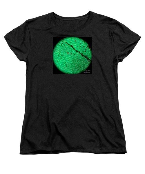 Butterfly Armor Women's T-Shirt (Standard Cut) by KD Johnson