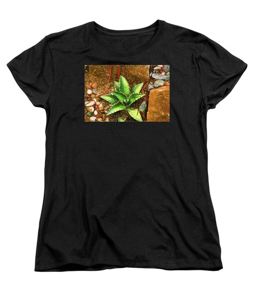 Cacti Moods In Technicolor Women's T-Shirt (Standard Cut) by Terry Cork