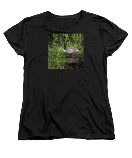 Women's T-Shirt (Standard Cut) featuring the photograph Canada Goose by Tyson and Kathy Smith