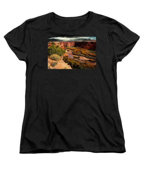 Canyon De Chelly Women's T-Shirt (Standard Cut) by Harry Spitz