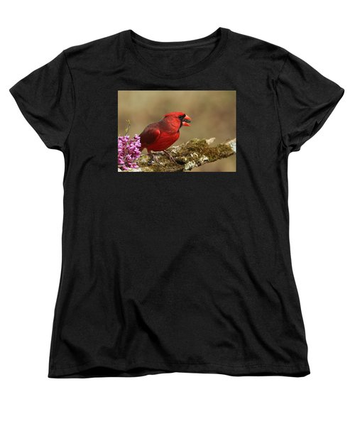 Cardinal In Spring Women's T-Shirt (Standard Cut) by Sheila Brown