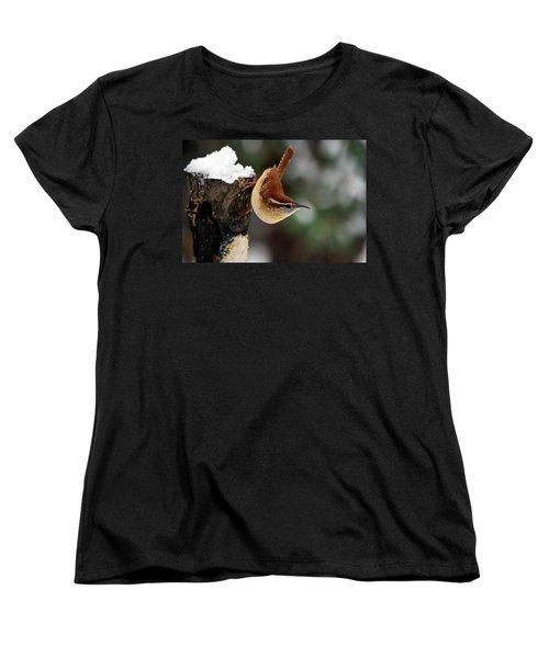 Carolina At The Suet Post Women's T-Shirt (Standard Cut) by Skip Willits
