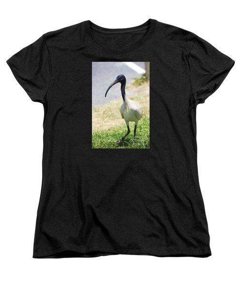 Carpark Ibis Women's T-Shirt (Standard Cut) by Jorgo Photography - Wall Art Gallery