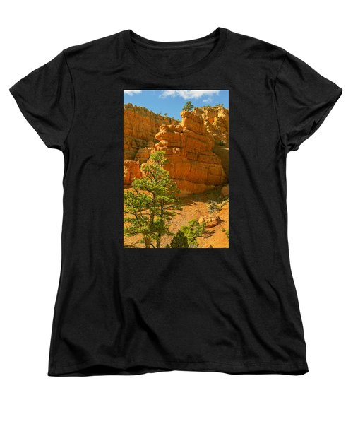 Women's T-Shirt (Standard Cut) featuring the photograph Casto Canyon by Peter J Sucy
