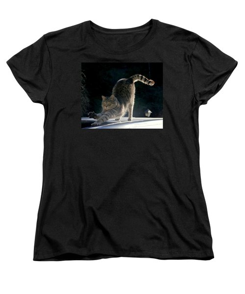 Women's T-Shirt (Standard Cut) featuring the photograph Cat Yoga by Peter Mooyman