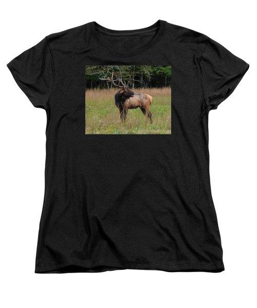 Women's T-Shirt (Standard Cut) featuring the digital art Cataloochee Valley Elk  by Chris Flees