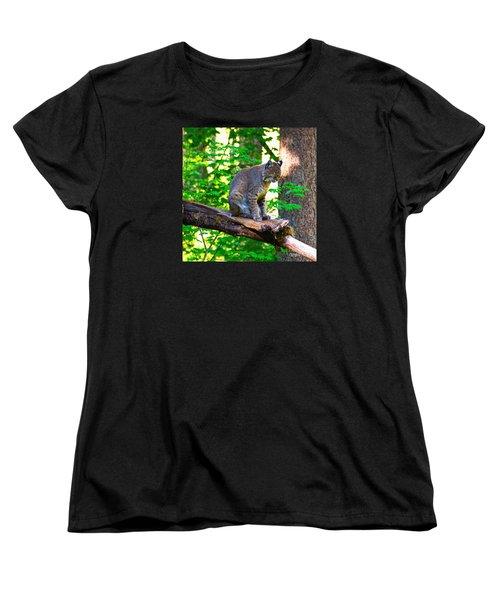 Catnap Women's T-Shirt (Standard Cut) by Ansel Price