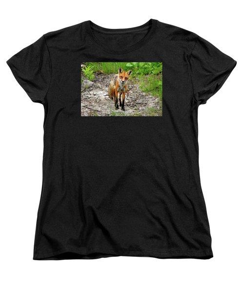 Women's T-Shirt (Standard Cut) featuring the photograph Cautious But Curious Red Fox Portrait by Debbie Oppermann