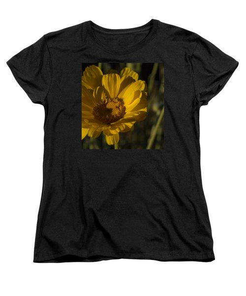 Women's T-Shirt (Standard Cut) featuring the photograph Cave Creek Beauty And Shadows by Carolina Liechtenstein