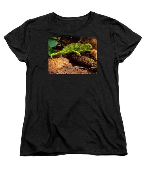 Chameleon Struts His Stuff Women's T-Shirt (Standard Cut) by Exploramum Exploramum