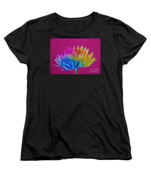 Cheerful Women's T-Shirt (Standard Cut) by Ray Shrewsberry