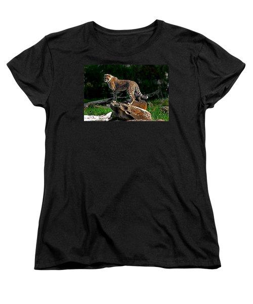Cheetah Cub Finds Her Pride Rock Women's T-Shirt (Standard Cut) by Miroslava Jurcik