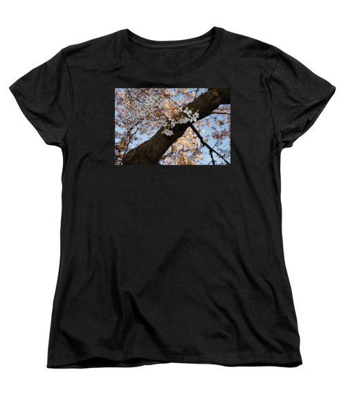 Cherry Blossoms Women's T-Shirt (Standard Cut) by Megan Cohen