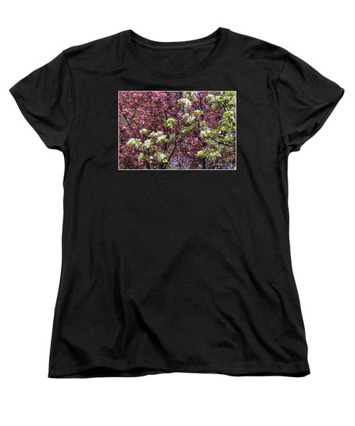 Cherry Tree And Pear Blossoms Women's T-Shirt (Standard Cut) by Dora Sofia Caputo Photographic Art and Design