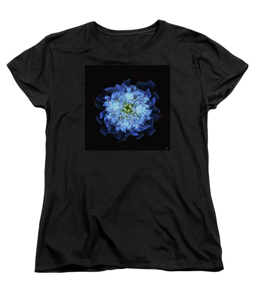 Chicory Abstract Women's T-Shirt (Standard Cut) by Stephanie Grant