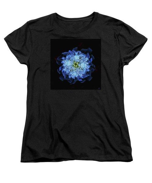 Chicory Abstract Women's T-Shirt (Standard Cut)