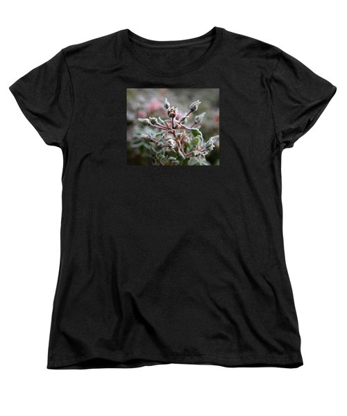 Christmas Miniature Rosebuds Women's T-Shirt (Standard Cut) by Katie Wing Vigil