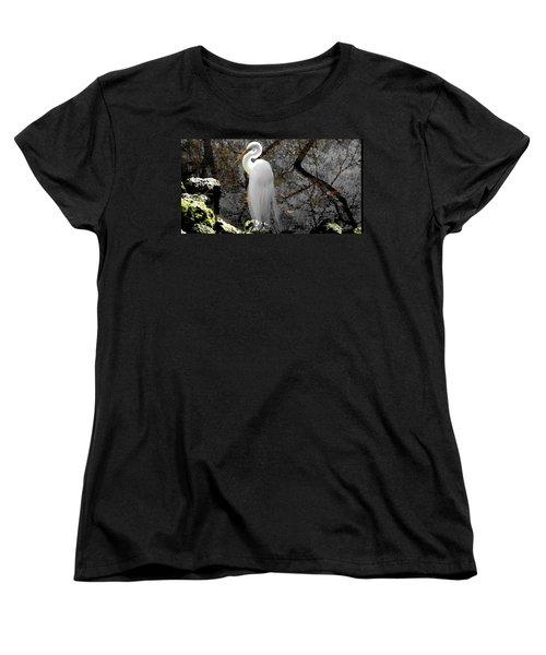 Cloaked Women's T-Shirt (Standard Cut) by Judy Wanamaker