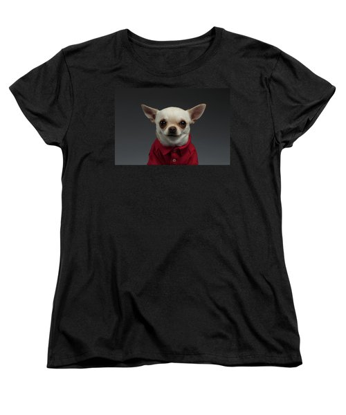 Closeup Portrait Chihuahua Dog In Stylish Clothes. Gray Background Women's T-Shirt (Standard Cut) by Sergey Taran