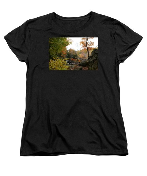 Women's T-Shirt (Standard Cut) featuring the photograph Colors Along The Stream by Lois Lepisto