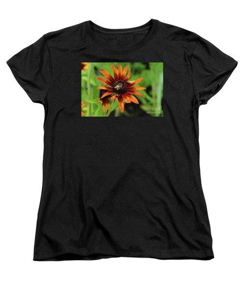 Cone Flower Women's T-Shirt (Standard Cut) by Eva Kaufman