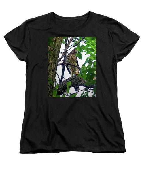 Cooper Hawk Women's T-Shirt (Standard Cut) by Sue Stefanowicz