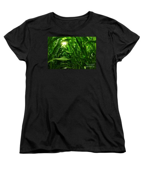 Corn Field Women's T-Shirt (Standard Cut) by Carlos Caetano