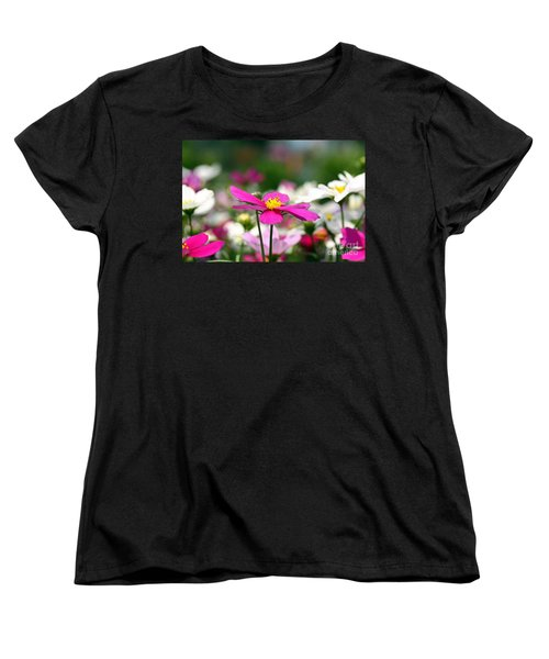 Cosmos Flowers Women's T-Shirt (Standard Cut) by Denise Pohl