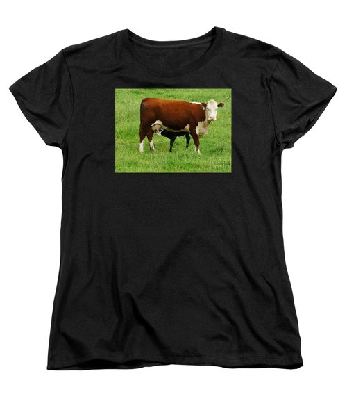 Cow With Calf Women's T-Shirt (Standard Cut) by Debra Crank