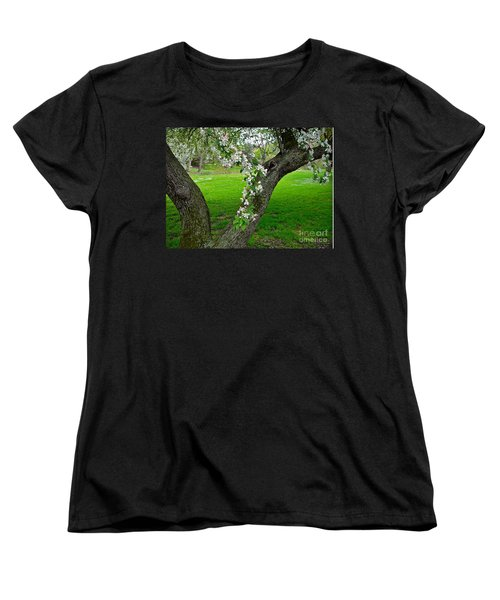 Crabapple Blossoms On A Rainy Spring Day Women's T-Shirt (Standard Cut) by Byron Varvarigos