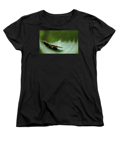 Women's T-Shirt (Standard Cut) featuring the photograph Cradled Painted Lady by Debbie Oppermann