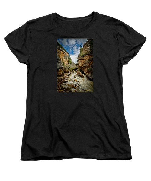 Crazy Woman Canyon Women's T-Shirt (Standard Cut) by Rikk Flohr