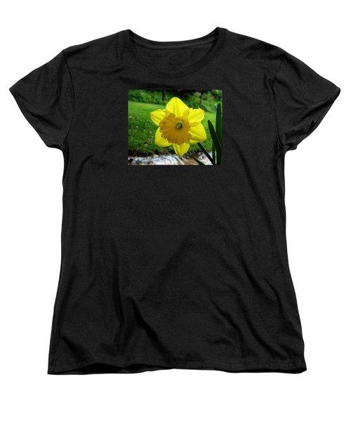 Daffodile In The Rain Women's T-Shirt (Standard Cut) by Dorothy Cunningham