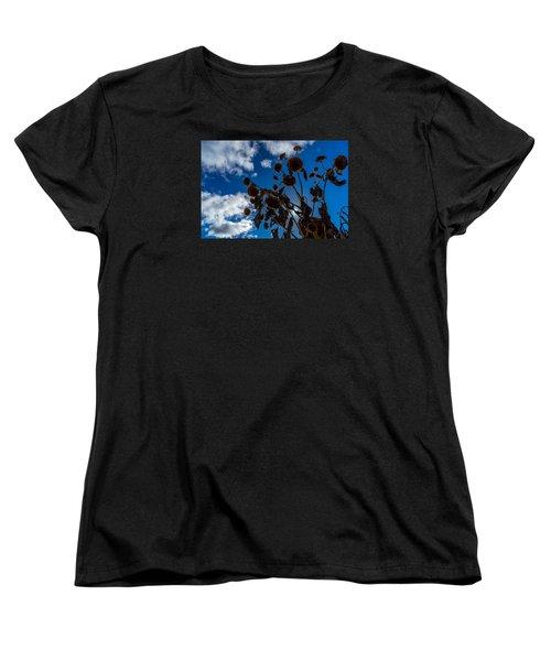 Darkening Skies Women's T-Shirt (Standard Cut) by Derek Dean