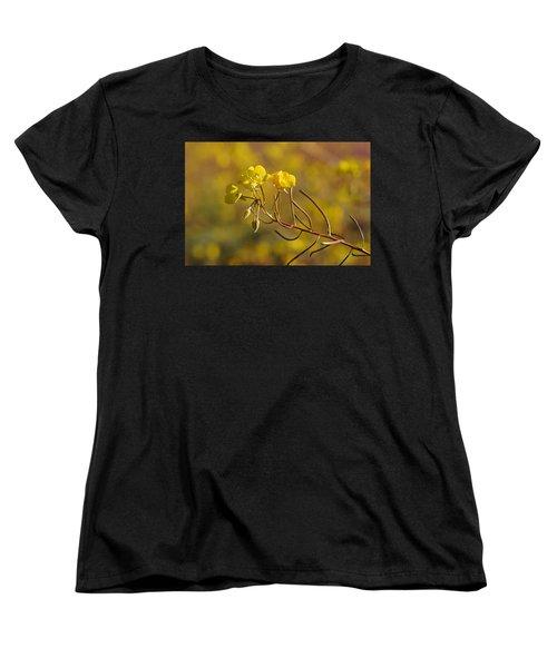 Death Valley Superbloom 301 Women's T-Shirt (Standard Cut) by Daniel Woodrum
