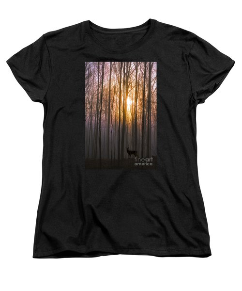 Deer In The Forest At Sunrise Women's T-Shirt (Standard Cut) by Diane Diederich