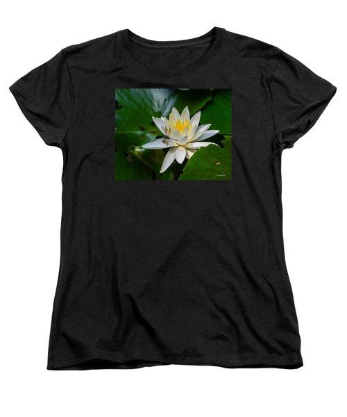 Dragonfly On Waterlily  Women's T-Shirt (Standard Cut) by Allen Sheffield