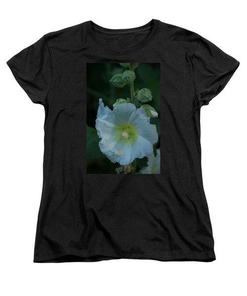 Dust Women's T-Shirt (Standard Cut) by Joseph Yarbrough