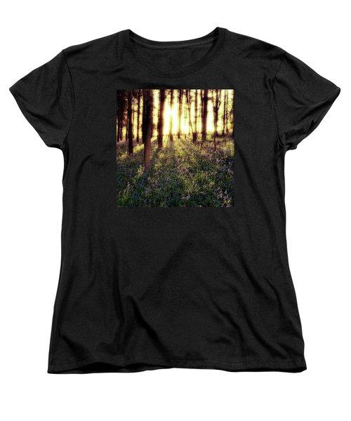 Early Morning Amongst The Women's T-Shirt (Standard Cut) by John Edwards