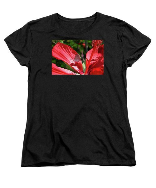 Eastern Tailed Blue Butterfly On Red Flower Women's T-Shirt (Standard Cut) by Inspirational Photo Creations Audrey Woods