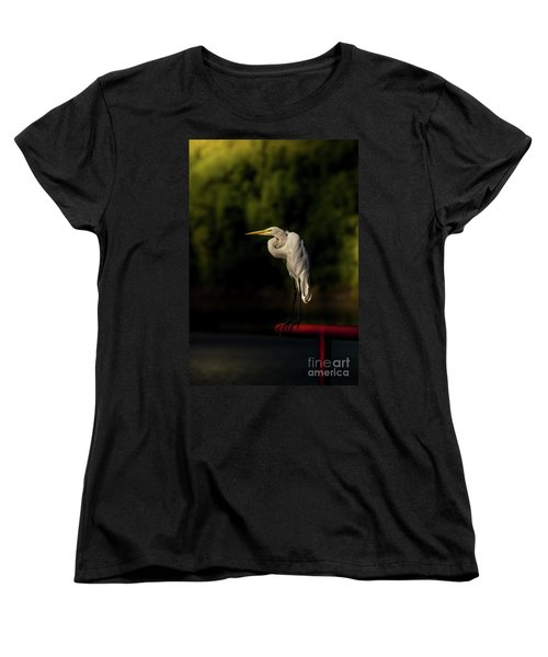 Women's T-Shirt (Standard Cut) featuring the photograph Egret On Deck Rail by Robert Frederick