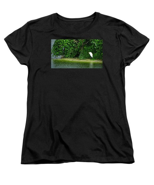 Egret Wakodahatchee Florida Wetlands Women's T-Shirt (Standard Cut) by David Mckinney