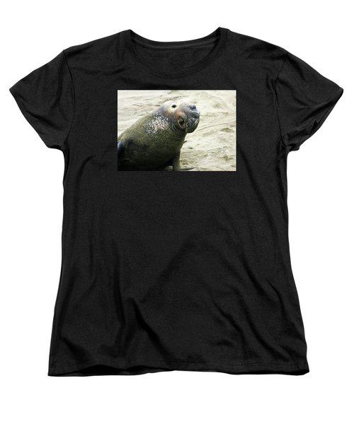 Women's T-Shirt (Standard Cut) featuring the photograph Elephant Seal by Anthony Jones
