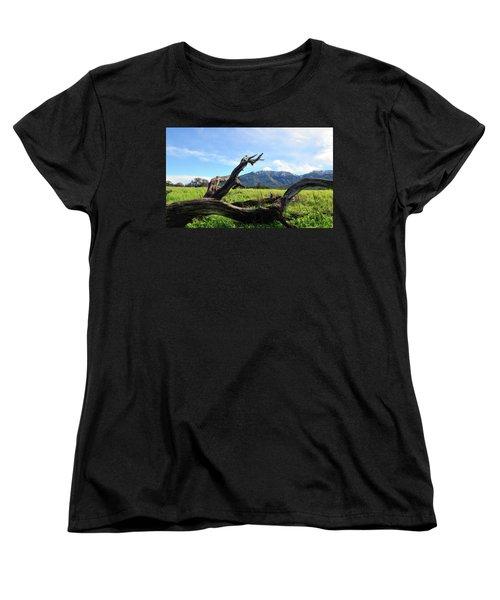 Emulating The Past Women's T-Shirt (Standard Cut) by Donna Blackhall