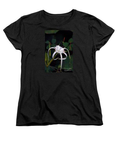 En Pointe Women's T-Shirt (Standard Cut) by Byron Varvarigos