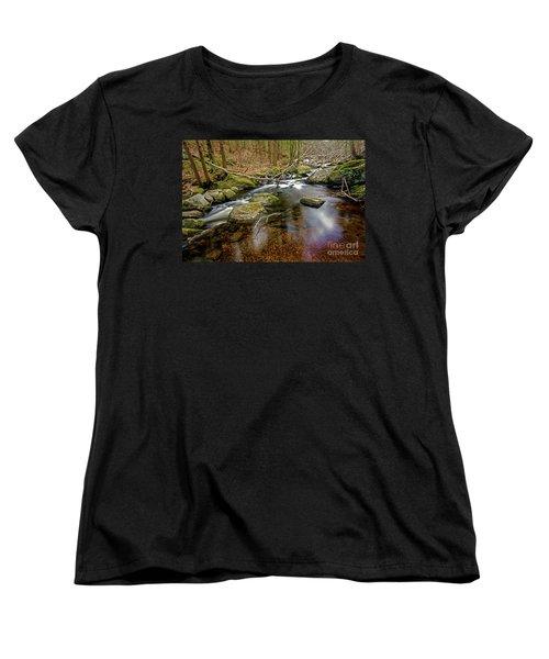 Enders Falls Women's T-Shirt (Standard Cut) by Jim Gillen