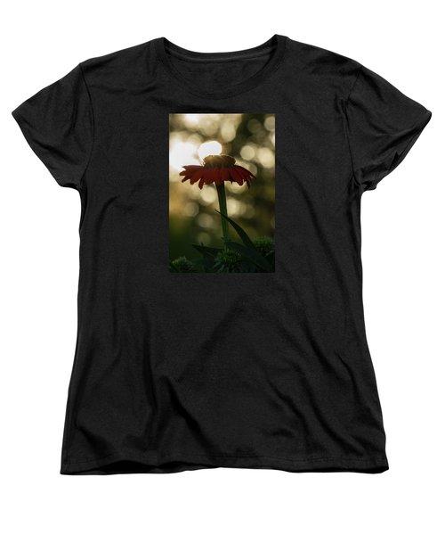 Women's T-Shirt (Standard Cut) featuring the photograph Evening Elegance by Penny Meyers