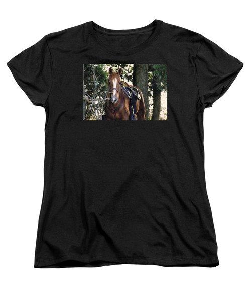 Eye Contact Women's T-Shirt (Standard Cut) by Stacy C Bottoms