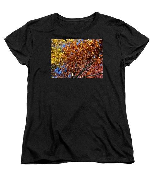 Fall Women's T-Shirt (Standard Cut) by Flavia Westerwelle