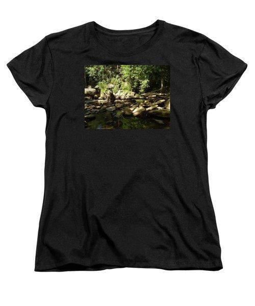 Falls Park Women's T-Shirt (Standard Cut) by Flavia Westerwelle